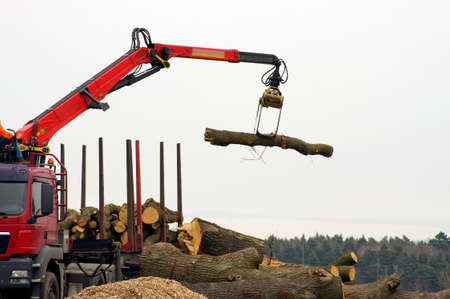 A truck with a crane arm will load logs.