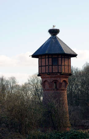 offspring: A stork nest on a water tower in which a stork feeding its offspring.