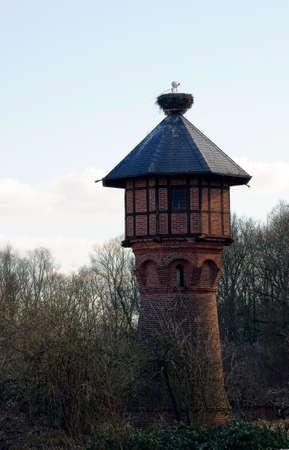 hijos: Un nido de cig�e�a en una torre de agua en el que una cig�e�a alimentar a sus cr�as.