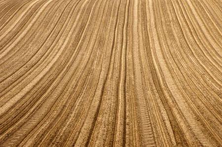 huellas de neumaticos: Las pistas inducidos tractores neum�ticos y surcos en un campo.