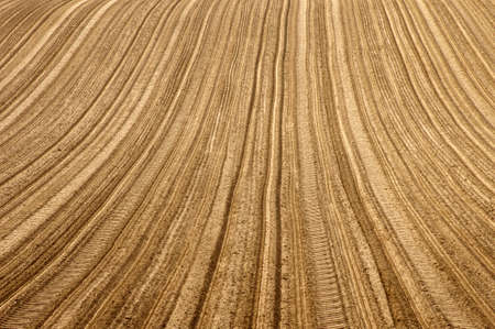 furrows: The induced tractor tire tracks and furrows in a field.