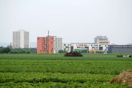 dormitories: High-rise buidlings and student dormitories of the University of Mainz and the University of Applied Sciences Mainz behind a field.