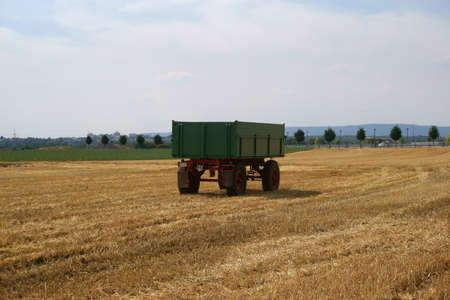 tractor trailer: A tractor trailer stands on a mowed cornfield.