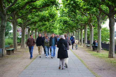 MAINZ: Mainz, Germany - June 19, 2015: Pedestrians and passersby going along under a tree-lined avenue on the Rhine Promenade on June 19, 2015 in Mainz.