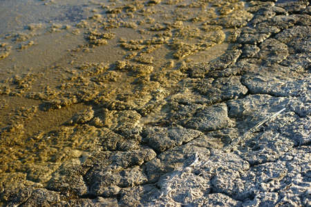 salinity: The closeup of fragile and with chemicals and feces permeated earth at Salton Sea in California due to pollution and over-fertilization. Stock Photo