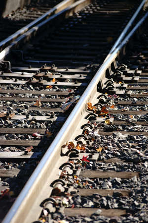 ballast: The top view of a roadbed with rails and ballast stones and autumn leaves.
