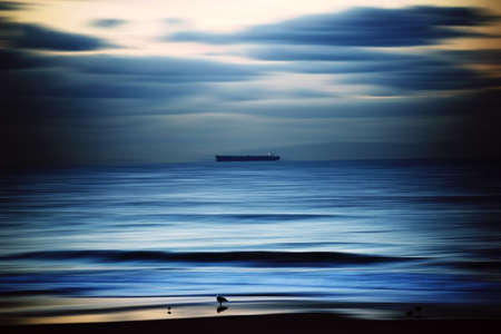 water birds: The smooth-drawn water of the Pacific with a ship on the horizon and water birds on the beach. Stock Photo