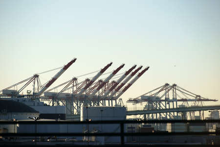 storage tanks: The industrial port of Los Angeles with cranes, industrial buildings and storage tanks.