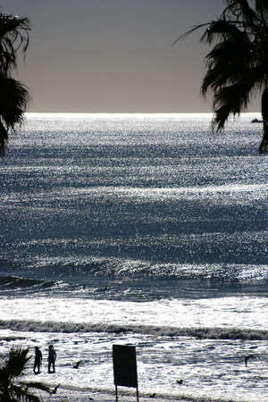sun bathers: The silhouettes of bathers and palm trees on the beach in Oceanside against the light. Stock Photo