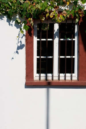 rejas de hierro: The nostalgic wooden windows of a listed house with iron bars before the frame, a bright facade and grape leaves. Foto de archivo