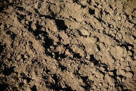 dug: The close up of dug and loosened soil.