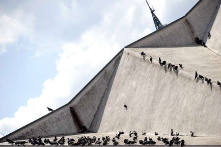 roof ridge: A group of many pigeons sitting on a striking roof.