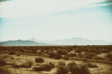 The panorama of a barren Mojave Desert landscape with dry plants, grass tufts and mountains in the backround. Stock Photo