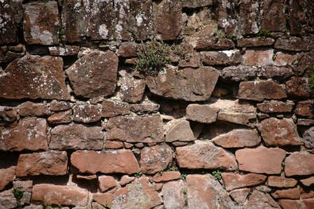 A rustic wall of staggered and broken stones with scattered succulent plants in the cracks in the walls.