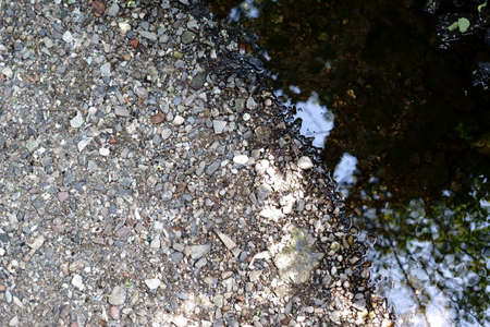 The shore of a river with pebbles and scree.