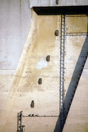 Birds sit in the niches of the concrete walls of a tower of a weir.