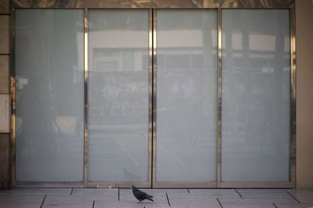 A modern sliding glass door of a shopping mall with shiny metal frame.