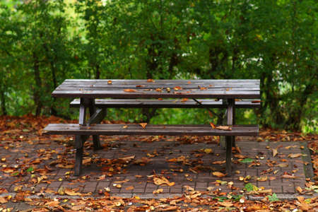 A picnic table made of wood at a park in autumn.