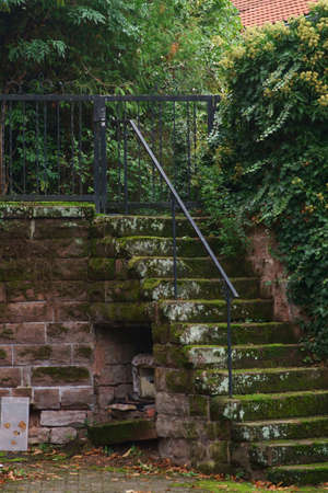 The mossy staircase of an old masonry or a castle.