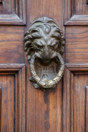 Door knocker in the shape of a lion on old wood door Archivio Fotografico