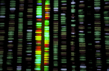 genomic: DNA sequence Stock Photo