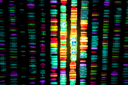 sequencing: DNA sequence Stock Photo