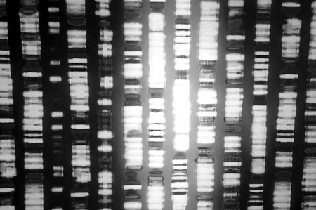 genomic: DNA sequence in black and white Stock Photo