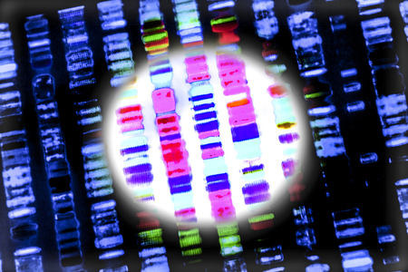 DNA sequence: graphic representation