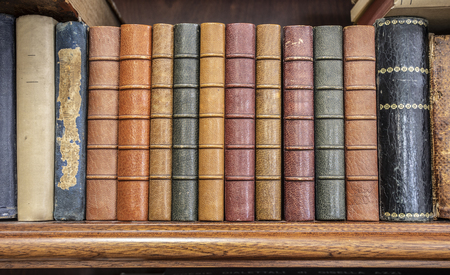 Books lined up on a shelf Archivio Fotografico