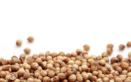 coriander seeds: Coriander seeds on white background