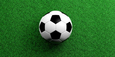 soccerball: 3d rendering soccerball on grass