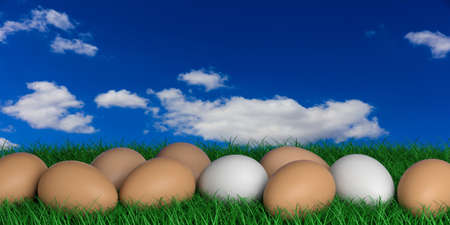 large group of objects: 3d rendering white and brown eggs on a blue sky background