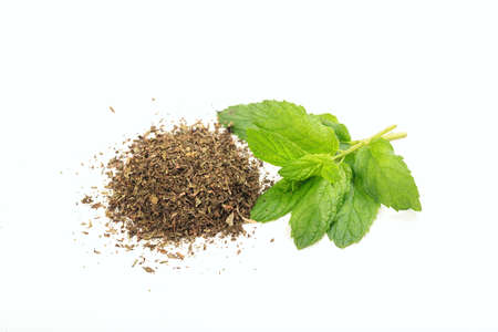 dry leaf: Spearmint fresh and dried on white background