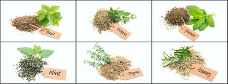 Various herbs on white background collage Zdjęcie Seryjne