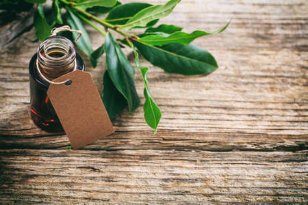 Fresh bay laurel and essential oil on wooden background