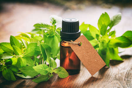 Fresh basil twig and oil on wooden background Stockfoto