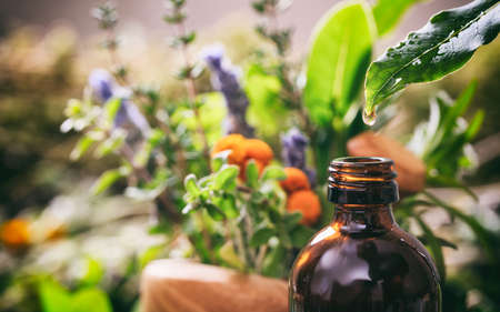 Variety of fresh herbs and a glass bottle