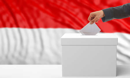 waiving: Voter on an waiving Indonesia flag background. 3d illustration