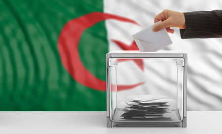 waiving: Voter on an waiving Algeria flag background. 3d illustration Stock Photo