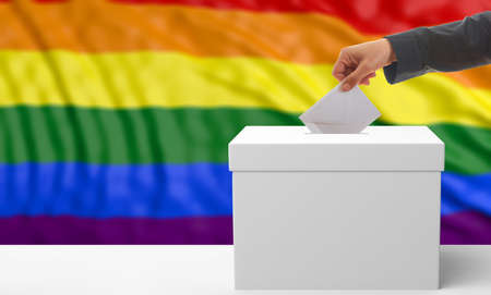 Voter on rainbow flag background. 3d illustration