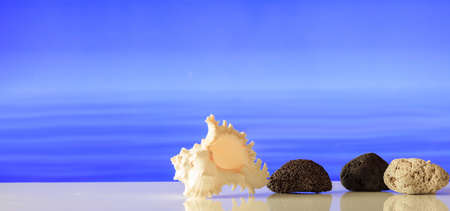 Pumice stones and a seashell on blue sea background Zdjęcie Seryjne