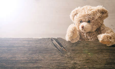 Teddy bear on wooden background, copy space