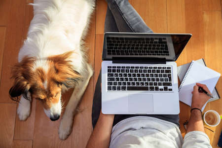 Modern workspace at home. Young man working with a laptop on the wooden floor, assisted by his dog. Top view