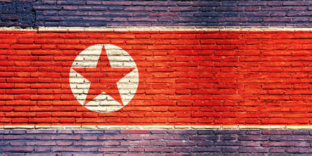 concrete block: North Korea national flag painted on a brick wall. 3d illustration
