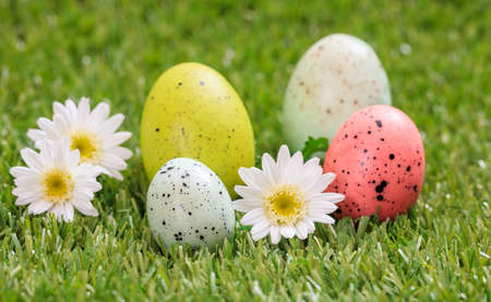 Easter concept. Colorful eggs and white daisies on green grass, close up view Stock Photo