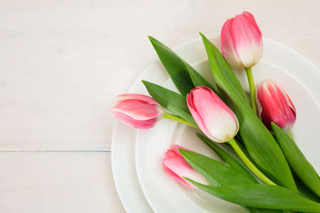 Valentines day concept. Pink tulips on white plates, white wooden background. Top view