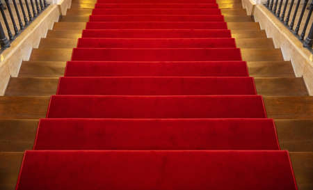 Red carpet luxury. Wooden stairs, going down, covered with red carpet background, perspective view