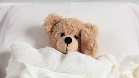 Headache, insomnia concept. Cute teddy in bed, covered with a warm blanket, holding his head