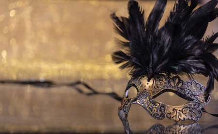 Carnival time. Venetian mask with feathers on golden bokeh background, reflections, copy space