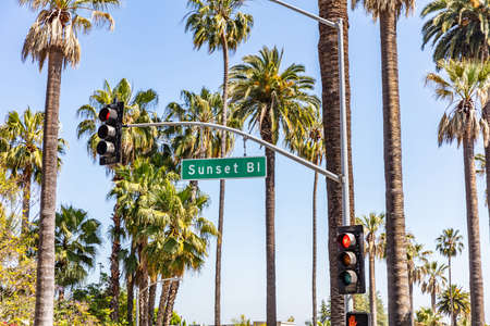 Sunset Bl. LA, California, USA. Text on green sign, red traffic lights, palm trees and blue sky background. Sunny spring day. 版權商用圖片